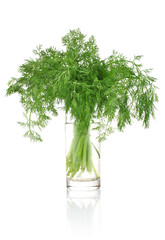 fresh dill in glass isolated on white background