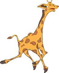 Giraffe. Cartoon