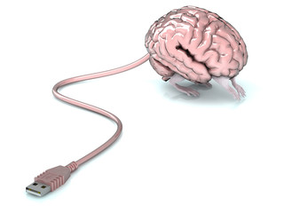 brain with legs and usb cable