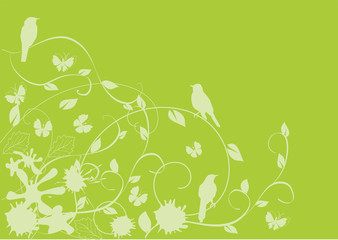 vector floral card with birds