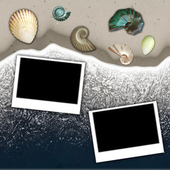 beach and sea shell