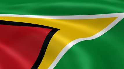 Guyanese flag in the wind