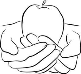 Hands hold fruit