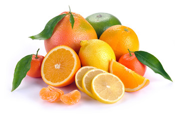set of citrus fruit with leaves