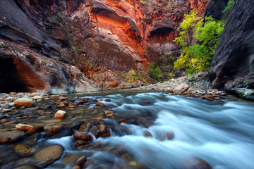 Wall Mural - Zion Canyon Narrows