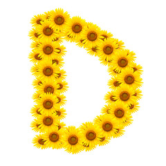 alphabet D , sunflower isolated on white background