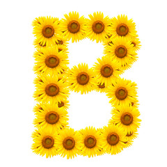 alphabet B , sunflower isolated on white background