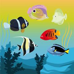vector colorful fishes in aquarium