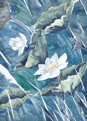An original watercolor painting,lotus