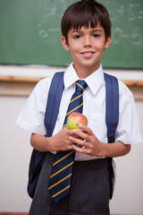 Portrait of a schoolboy holding an apple