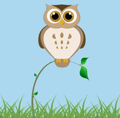 Big owl on a thin branch