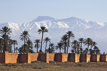 neige et palmiers