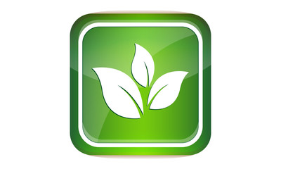 Green leaf button