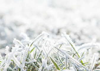 Frosty winter background with copy space