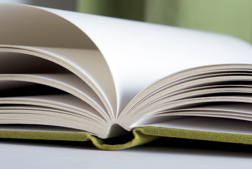 Grünes Buch mit leeren Seiten