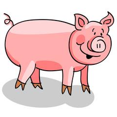 Pig cartoon on white