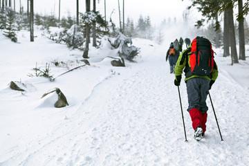 People hiking in winter