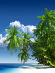 Tropical beach paradise - fototapety na wymiar