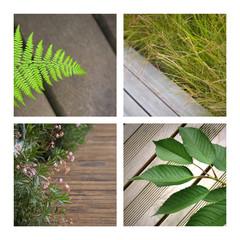Wall Mural - terrasse, patio, maison, jardin, jardinage, plante, bois