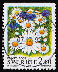 Postage stamp Sweden 1993 Oxe-eye Daisy Flowers
