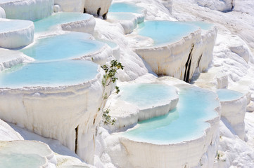 Foto op Plexiglas Turkije Travertine pools at ancient Hierapolis, now Pamukkale, Turkey