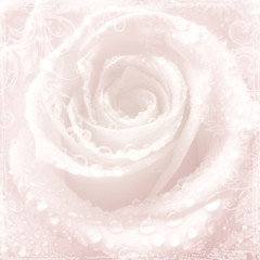 Tenderness pink wedding background with rose