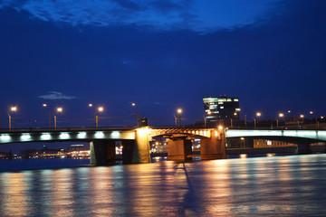 Alexander Nevsky Bridge at night
