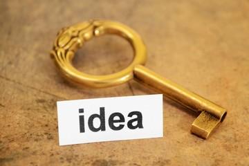 Idea and key concept