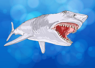shark with open mouth against the background of blue water