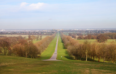 Fototapete - The Long Walk and Windsor Castle in Winter