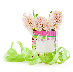 pink hyacinths and greeting card on a white background .