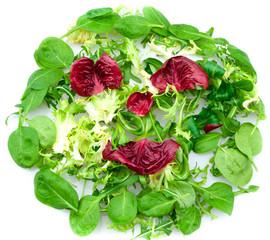 Fototapete - Smiling Salad
