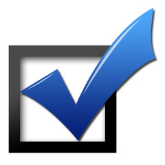 Blue vote check mark
