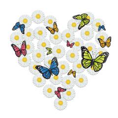 coeur_marguerite_papillons