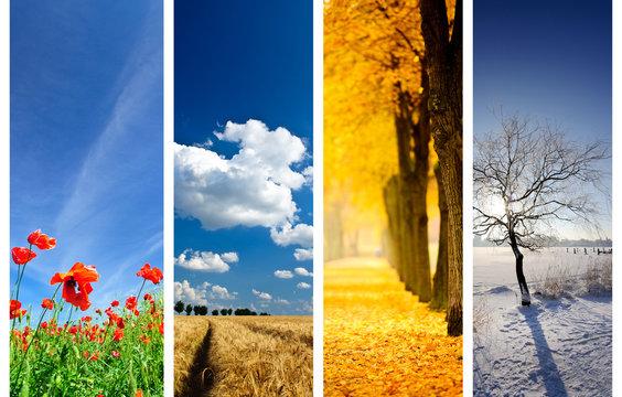 Jahreszeiten Collage
