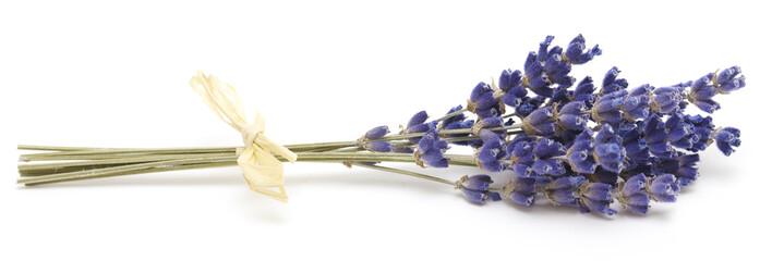 Photo sur Plexiglas Lavande bunch of lavender