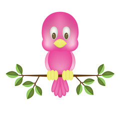 Cute pink bird, isolated