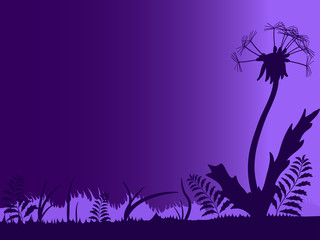 Silhouette of meadow with dandelion against the night sky
