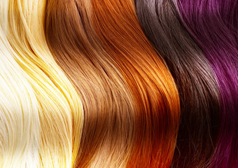 Fotobehang Kapsalon Hair Colors Palette