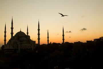 Blue Mosque in sunset scene