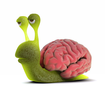 3d Snail has a huge brain