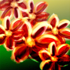 Colorful abstract flowers digital painting