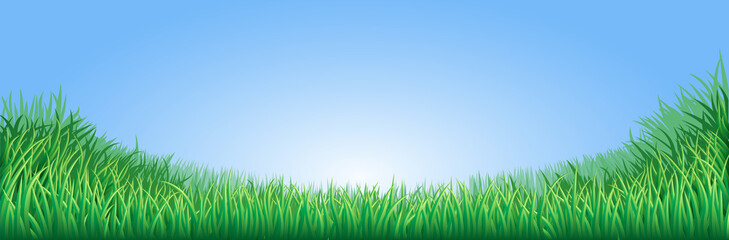 Green grass field illustration