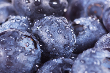 closeup of blueberries.
