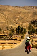 Perou Cordillère des Andes