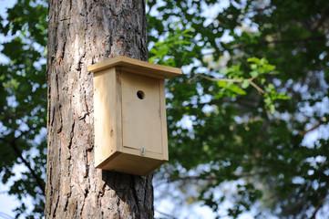 Brutkasten, Nistkasten, Vogelschutz, Naturschutz, Singvögel