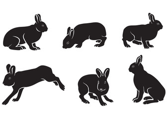 silhouette of hares