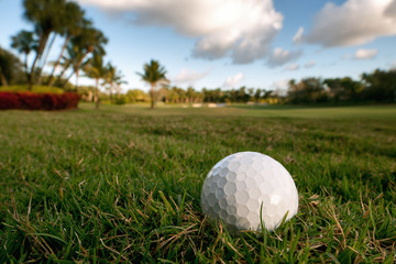 golf ball lies on rough beside fairway of tropical florida cours
