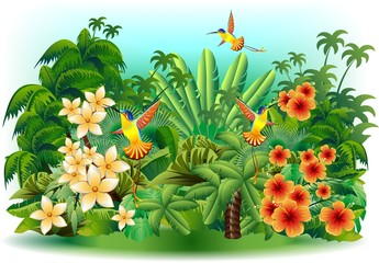 Poster Forest animals Colibri Giungla e Fiori-Hummingbirds on Jungle-Vector