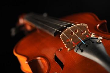 close up shot of a violin, shallow deep of field